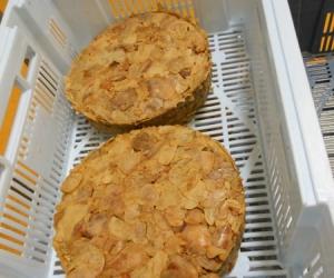Muestra de panes prensados de los chicharrones.